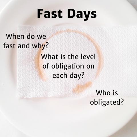 fast days for website